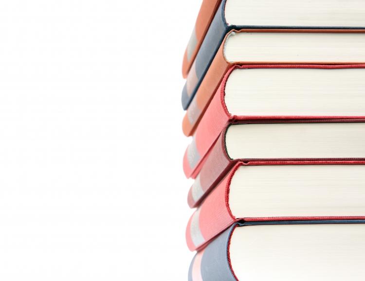 CEBR Journal in Scopus Source List (Elsevier)